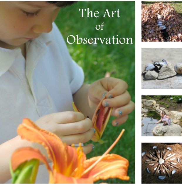 Great tips for teaching children to observe and learn about the natural world...