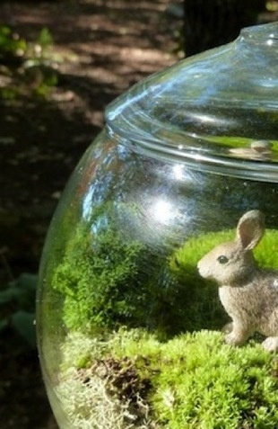 Make a Terrarium with the kids for easter