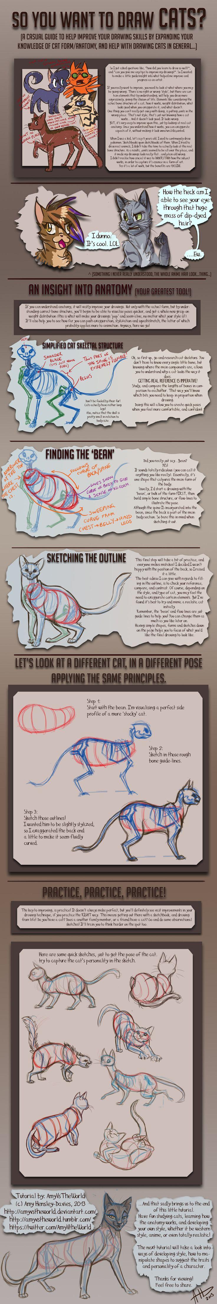 ashgrayart: http://yolly-anda.deviantart.com/art/How-to-draw-cats ...