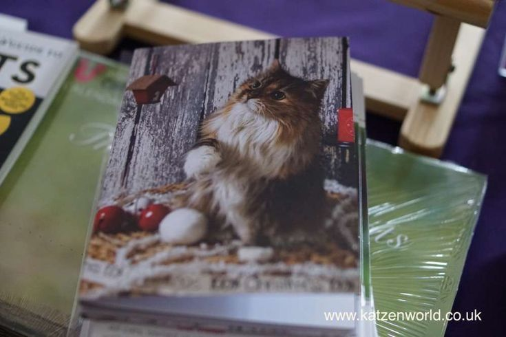 Hi everyone, In October we we went to another great conference ofInternational Cat Care. At the show we picked up some purrfect Christmas cards for you all but before we get into the details on t...