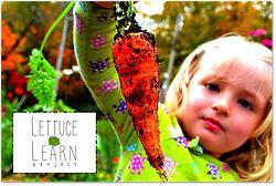 """Il Crowdfunding è Green: Nasce la raccolta fondi per le nuove """"Idee Biologiche"""""""