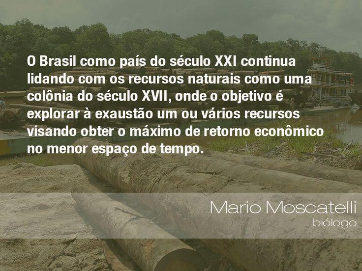 """""""O Brasil como país do século XXI continua lidando com os recursos naturais como…"""