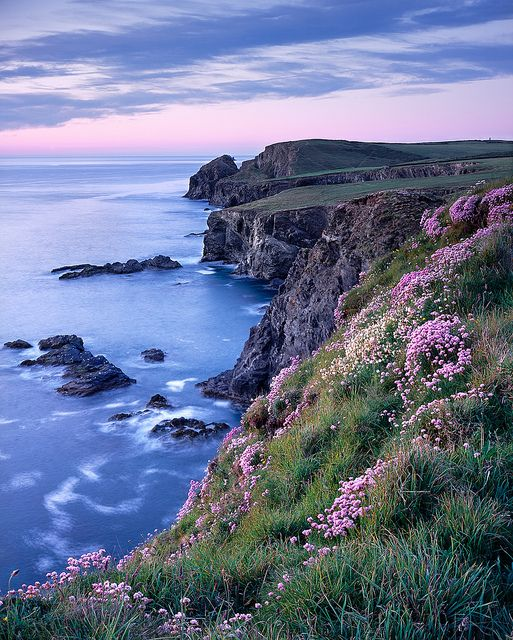 Cornwall, England...my favorite kind of landscape. (OK, it's tied between Celtic countryside and mountains.)