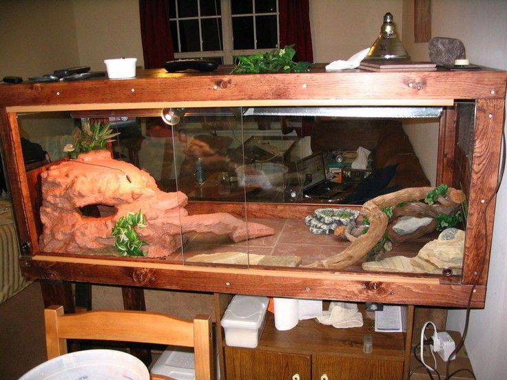 Make a Fake Rock Cave/basking Spot for a Reptile Cage.