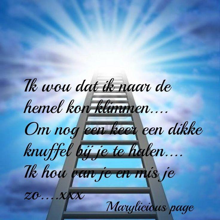 Facebook marylicious page spreuken en gedichten gedichten pinterest ladder van and facebook - Een ster in mijn cabine ...