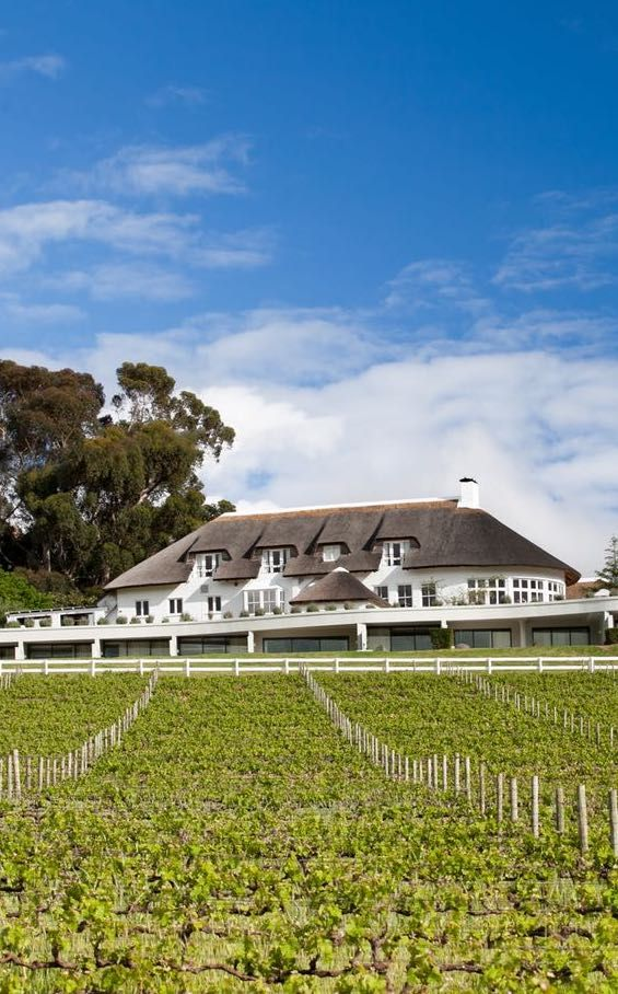 Mont Rochelle Hotel & Vineyard in the Cape Winelands, South Africa. Wines & effortless elegance. Timbuktu Travel.