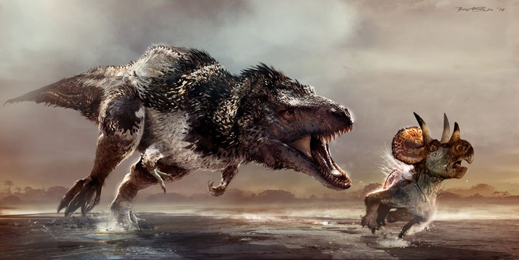 Tyrannosaur chasing a young Triceratops. Tasty Feathered Dinosaur eye candy!