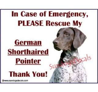 German Shorthaired Pointer  - rescue sticker