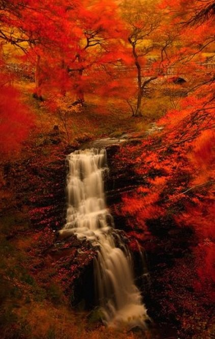 ♥  Full Blown Autumn Waterfall