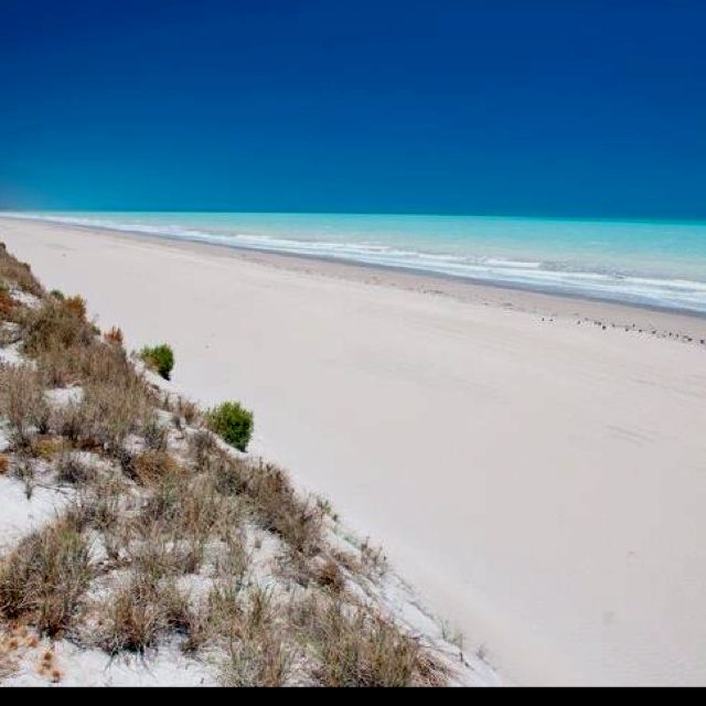 Eighty mile beach, south of Broome,  West Australia  (Australian Geographic )