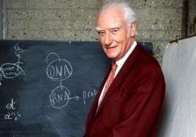 12-Apr-2013 3:35 - NOBELPRIJS DNA-ONTDEKKER GEVEILD. De Nobelprijs van een van de ontdekkers van het DNA is op een veiling in New York verkocht voor ruim 1,6 miljoen euro. De waarde was vooraf geschat op 380.000 euro. De prijs werd in 1962 uitgereikt aan Francis Crick, die hem won samen met zijn collegas James Watson en Maurice Wilkins. Zij hadden 10 jaar eerder aangetoond dat de bouwstenen van het leven de vorm van een dubbele helix hebben. De nabestaanden van Crick hadden besloten de...