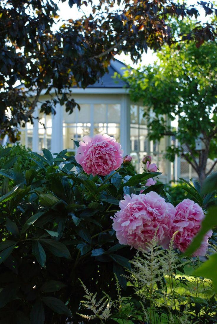 237 best Jardins images on Pinterest