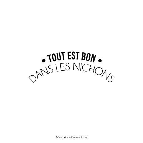 Tout est bon dans les nichons - #JaimeLaGrenadine #ToutEstBonDansLeCochon #nichons #nips #seins