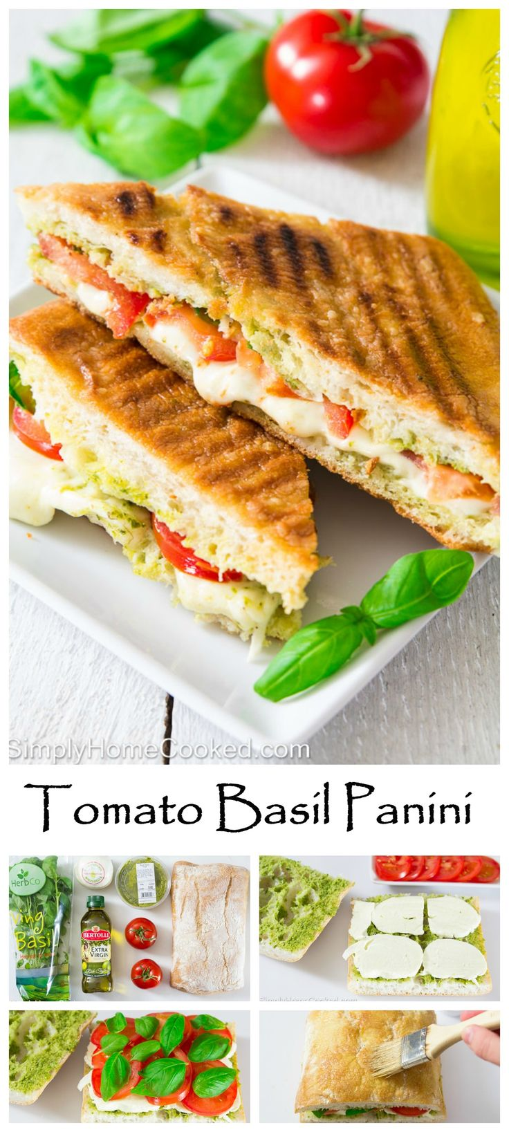 Grilled tomato basil panini with fresh melted mozzarella oozing out.