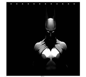 9 best batman bathroom images on pinterest bathroom for Batman bathroom ideas