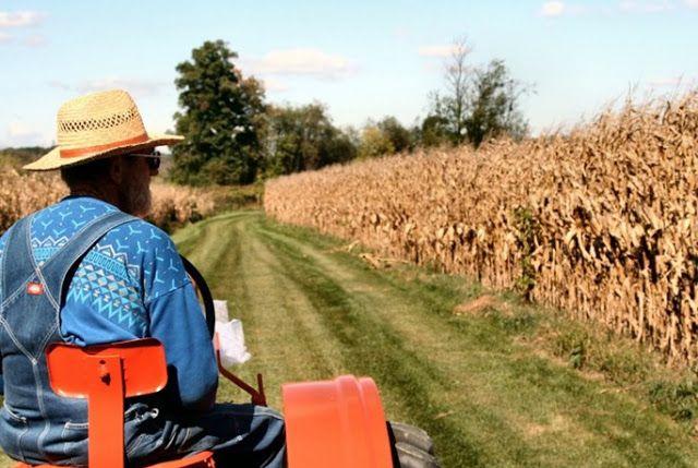 Πιερία: Στο ταμείο 650.000 αγρότες για 2,7 δισ.
