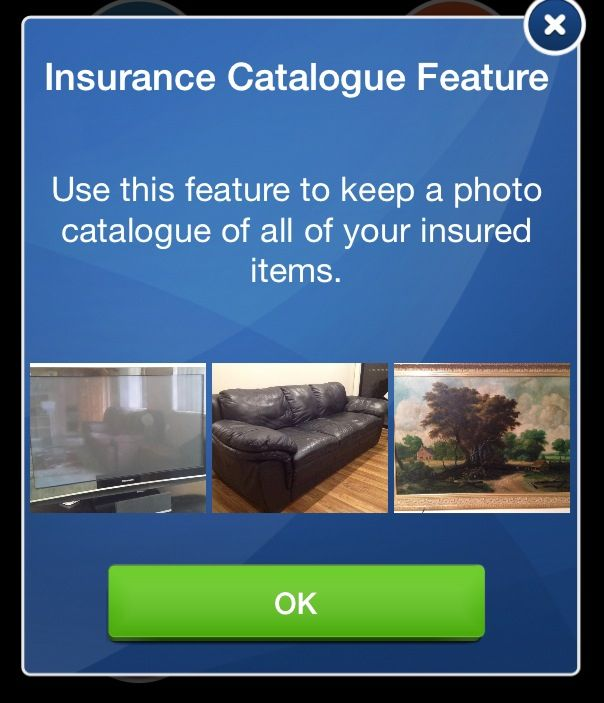 This is a quick simple way to store photos of your contents for Insurance purposesYou can link the photos to receipts warranties and reminders of when renewal of Insurance Policies are due.