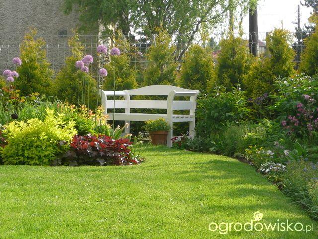 Ławka w ogrodzie - strona 23 - Forum ogrodnicze - Ogrodowisko