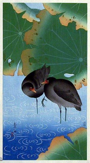 Moorhens  by Komori Soseki, 1929  (published by Kawaguchi & Sakai