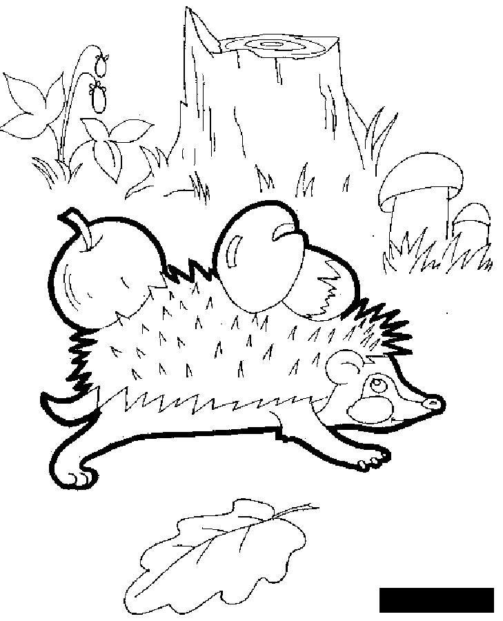 раскраски осень осенние поделки лесные животные