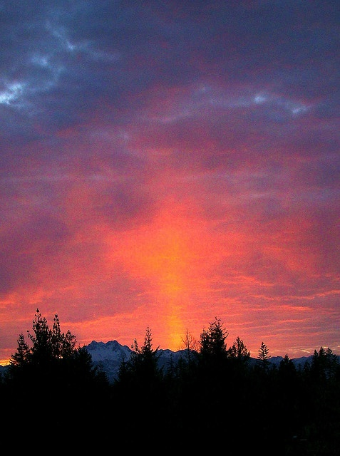 sunset on olympic mountains