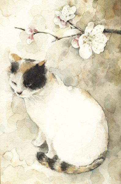 Watercolor of a cat by Midori Yamada