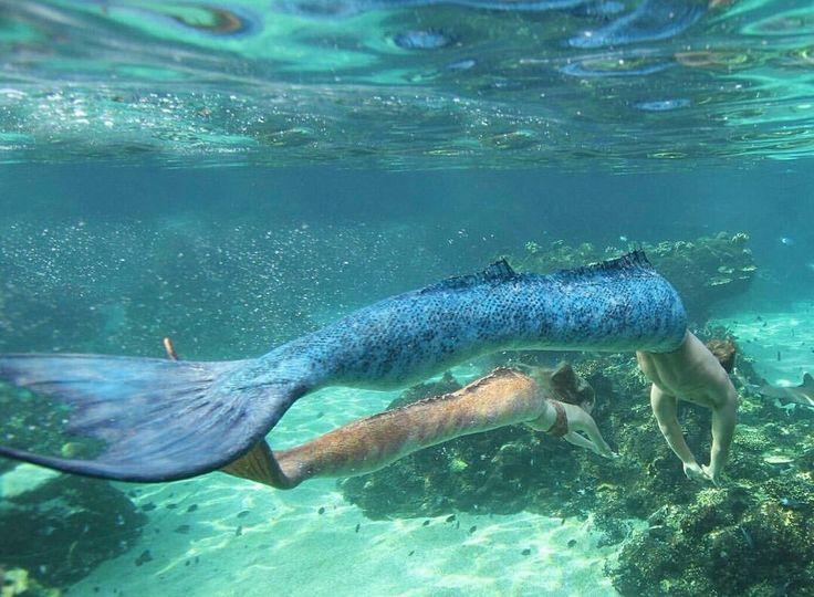 how to become a mako mermaid