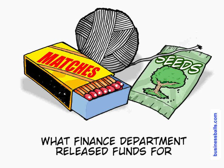 treeswing - what finance department budgeted