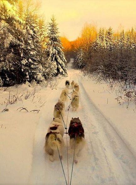 15 façons de profiter de l'hiver // Neige folle, festivals réjouissants, accueil chaleureux... Photo: Northwoods Survival