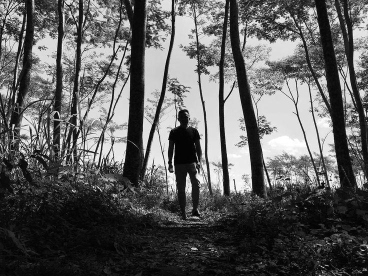 Adopt the pace of nature: her secret is patience. -Ralph Waldo Emerson #alasmaliran #hutanmaliran #blitar #bnwlife #bnwphotography #bnw_society #bnw #jawatimur #bnwmood #bnw_planet #bnw_life