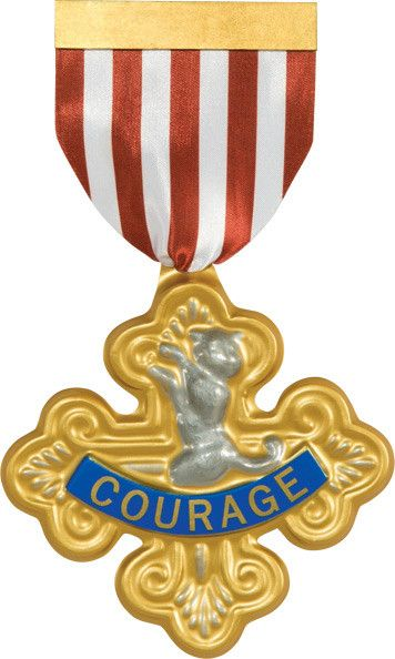 * Includes: Badge of Courage with attached ribbon * Pin on back of ribbon * Officially licensed * A great accessory to complete any Wizard of OZ Cowardly Lion costume! * Brand new in manufacturer pack