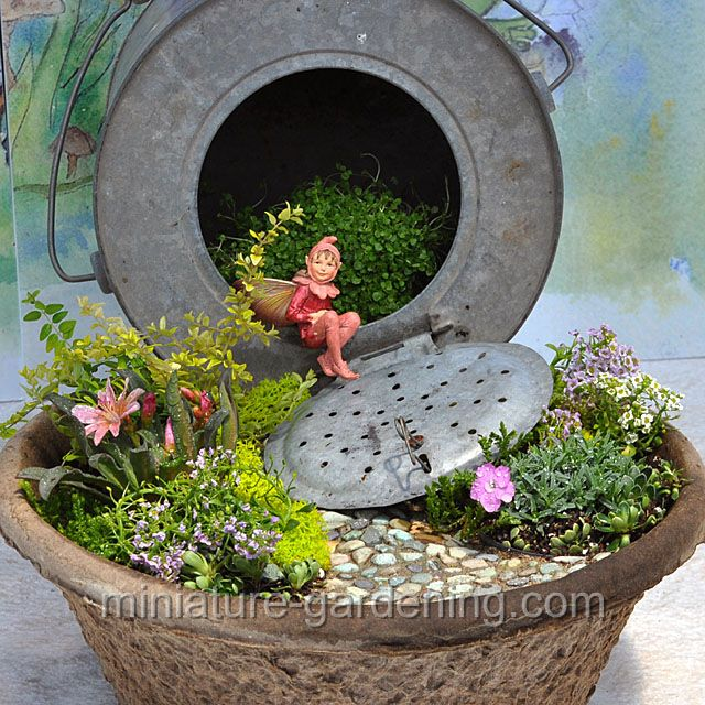332 best Container Fairy Gardens images on Pinterest | Fairy ...