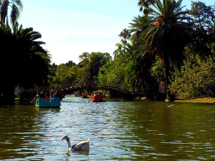 Palermo Lakes,