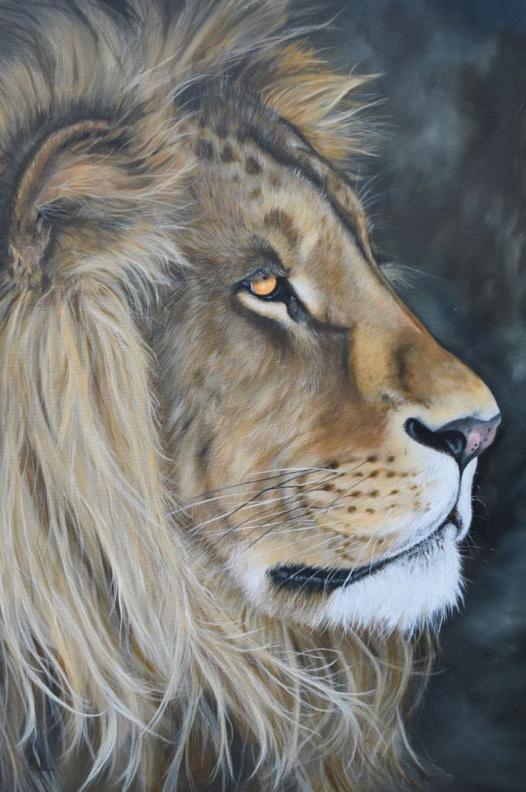 242 best Paintings of Lions and Tigers images on Pinterest | Big ... for Lion And Lamb Painting  45jwn