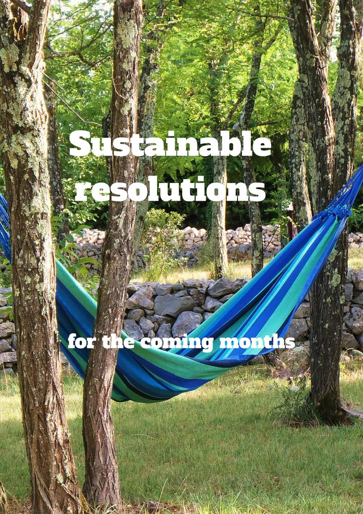 Sustainable resolutions for the new year - including aspirational resolutions because we all need to have a dream - https://wp.me/p90hGP-3D