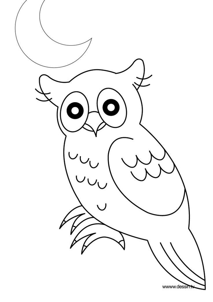 Coloriage hibou animaux de la foret pinterest - Dessins hibou ...