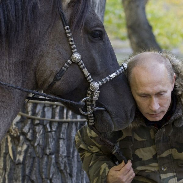 42 Pictures That Prove Just How Much Badass Vladimir Putin Really is – The Awesome Daily - Your daily dose of awesome