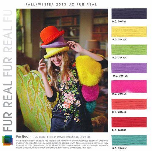 Design Options - Fur Real