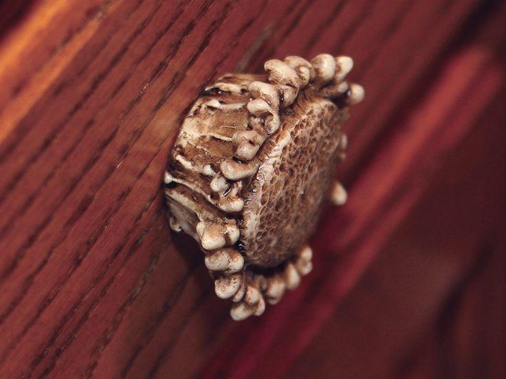 Best 25 Deer Antler Decorations Ideas On Pinterest Deer