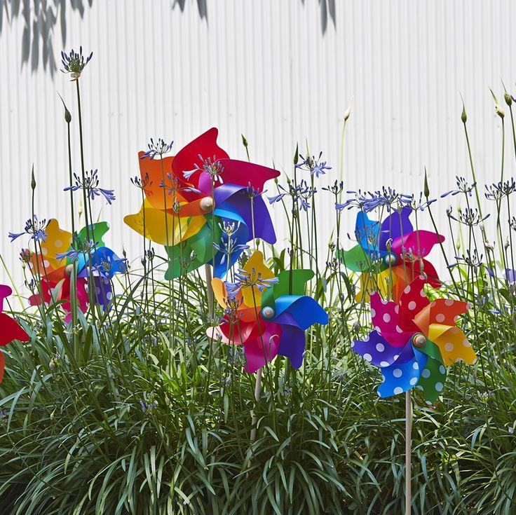 Grande & Jumbo Windmills amongst Agapanthus........#whirlywindmills #pinwheels #garden #design #celebration #party #rainbow