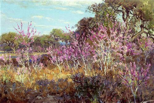 Redbud Tree In Bloom At Leon Springs, San Antonio - Julian Onderdonk