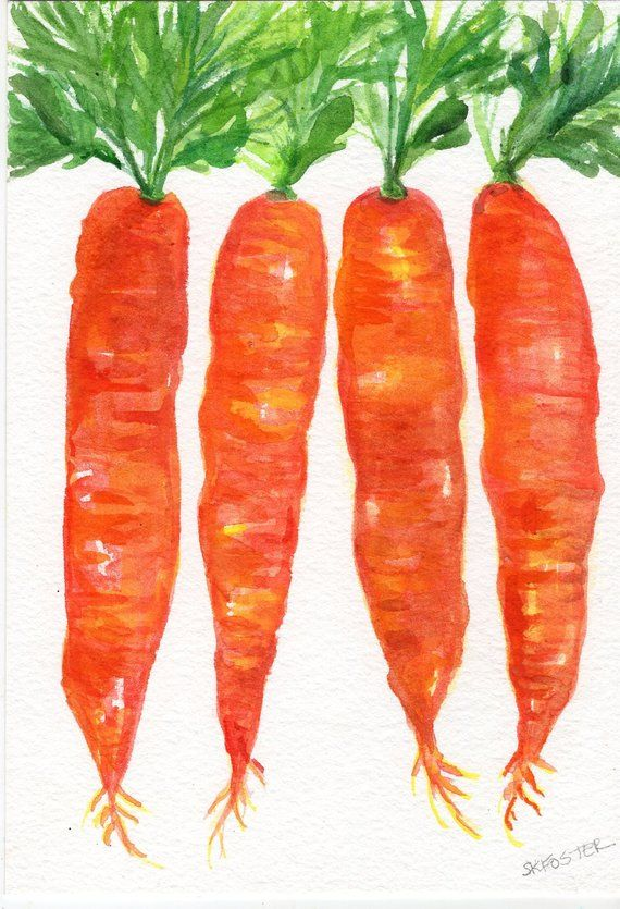 Original Carrots Watercolor Painting 5 X 7 Watercolor Paintings