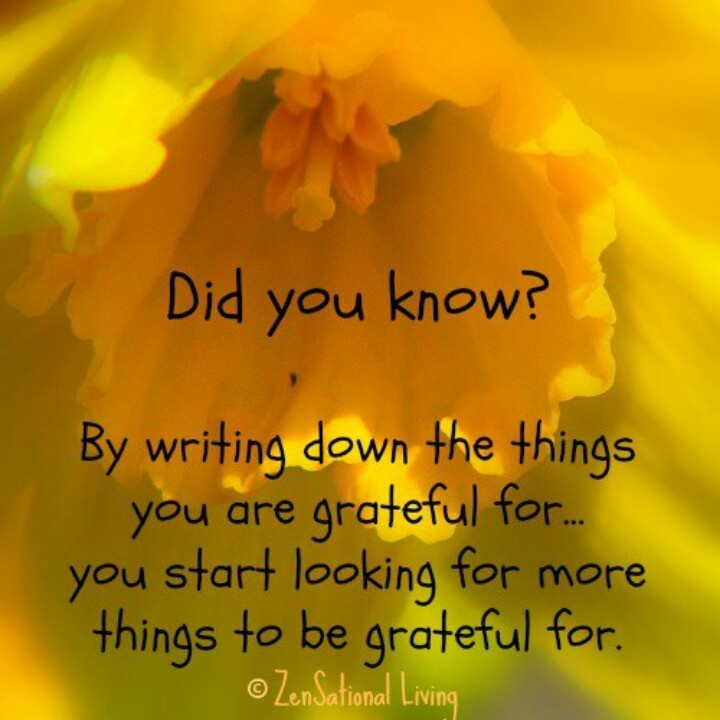 Starting my gratitude journal this month. What better month than that of Thanksgiving?