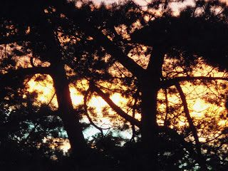 Keith Loreth Cosmic Art: Sunset off my Balcony