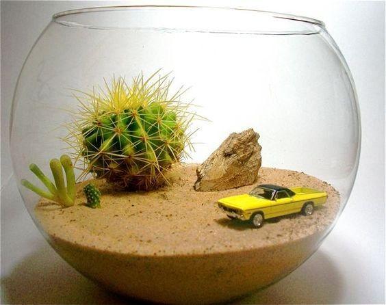 25 Ideas Para Decorar Con Cactus