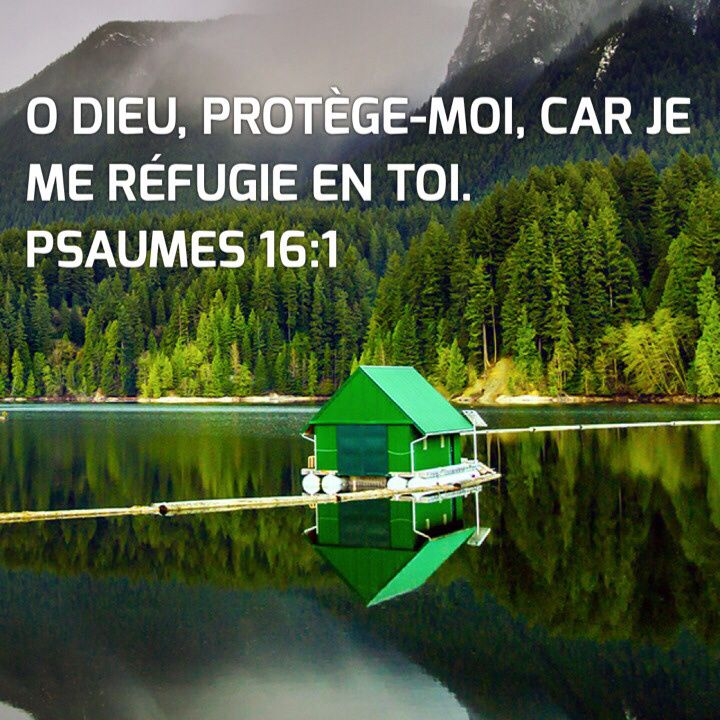 Psaume 16:1                                                       …
