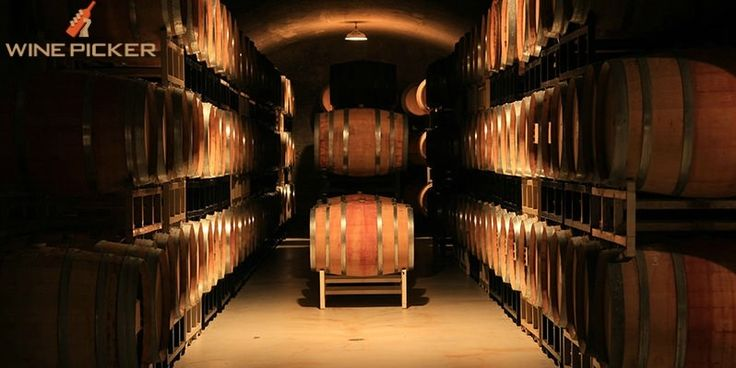 Building a cellar with your own hands