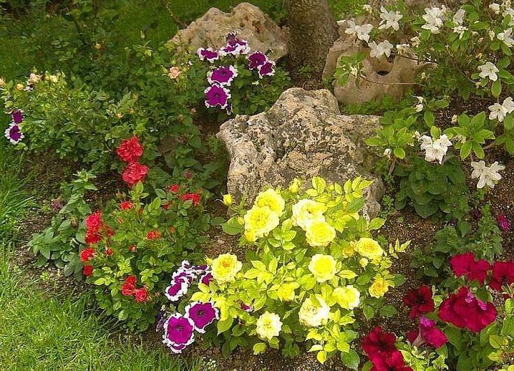 Las 25 mejores ideas sobre decoraci n de jard n frontal - Decorar jardines pequenos ...