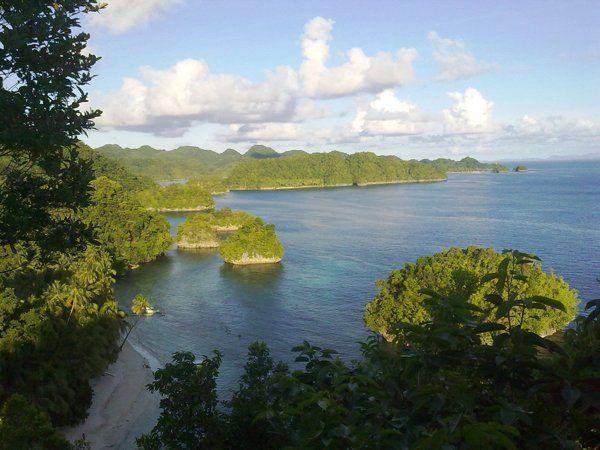 Swim with 'stingless' jellyfish in Siargao | Travel Bucket List - Yahoo News Philippines