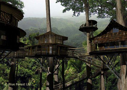 If you want to live in a treehouse all the time, there are ways to do it. Finca Bellavista Rainforest Village is a permanent community of treehouses at the base of a rain forest mountain in Costa Rica. The goal of the community is to preserve rain forest acreage and promote sustainable living arrangements.: Buckets Lists, Swiss Families Robinson, Costa Rica, Costa Rica, Treehouse Community, Trees House, Trees Home, Finca Bellavista, Rainforests